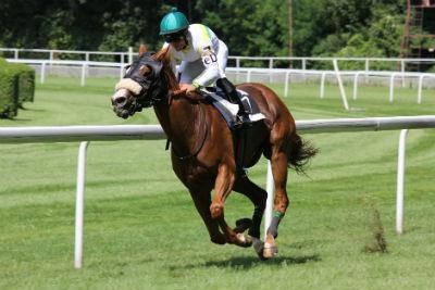 Apostar a un caballo colocado en una carrera handicap
